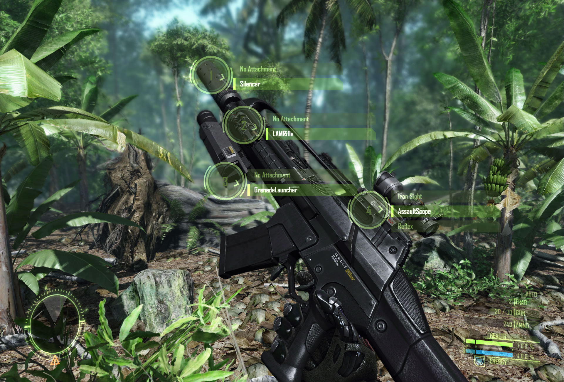 jungle-2.jpg
