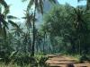 jungle-1.jpg