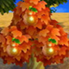 naranja perfecta frutas Animal Crossing New Leaf