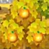 naranjas frutas Animal Crossing New Leaf